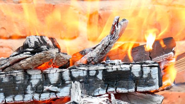 Firewood Burned In A Bonfire