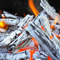 bonfire, fire, wood coal and ash - PhotoDune Item for Sale