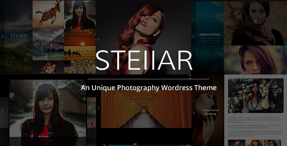 ThemeForest Stellar Responsive Creative and Photography Theme 8921527