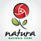 Natura Logo - GraphicRiver Item for Sale