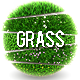 5 Grass | Flowers Balls - GraphicRiver Item for Sale
