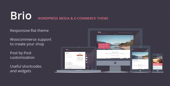 Brio - Media & E-Commerce WordPress Theme - Personal Blog / Magazine