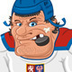 Czech Hockey Player - GraphicRiver Item for Sale