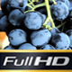 Grapes Hanging of The vineyard - VideoHive Item for Sale