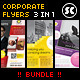 Multi purpose Corporate Flyer Bundle