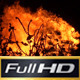 Burning Fire - VideoHive Item for Sale