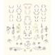 Set of Symmetrical Floral Graphic Design Elements - GraphicRiver Item for Sale