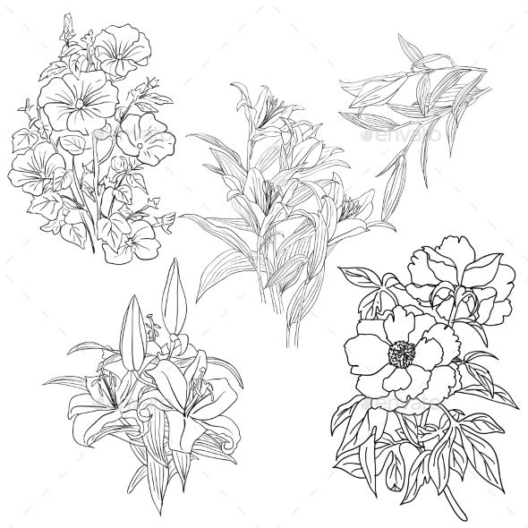 GraphicRiver Set of Hand Drawn Flower 8953059