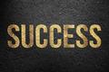 Success - Golden Text - PhotoDune Item for Sale