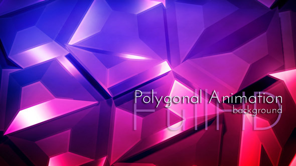 Polygonal Animation