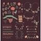 Big Set of Floral Graphic Design Elements - GraphicRiver Item for Sale