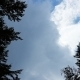 Trees And Clouds 2 - VideoHive Item for Sale