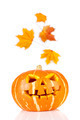 halloween, old jack-o-lantern on white - PhotoDune Item for Sale