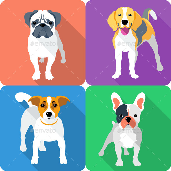 GraphicRiver Vector Set Dog Icon Flat Design 8962793