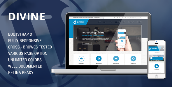 ThemeForest Divine Professional Business WordPress Theme 8967887
