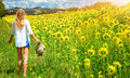 Walking in sunflowers field - PhotoDune Item for Sale
