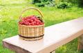 Wicker basket full of ripe raspberry on the bench - PhotoDune Item for Sale