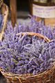 Lavender bunches selling in a outdoor french market - PhotoDune Item for Sale