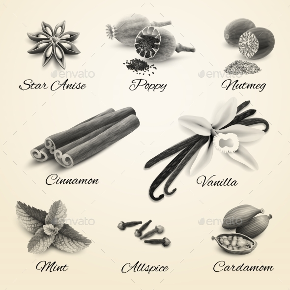 GraphicRiver Spices Set Black and White 8974738