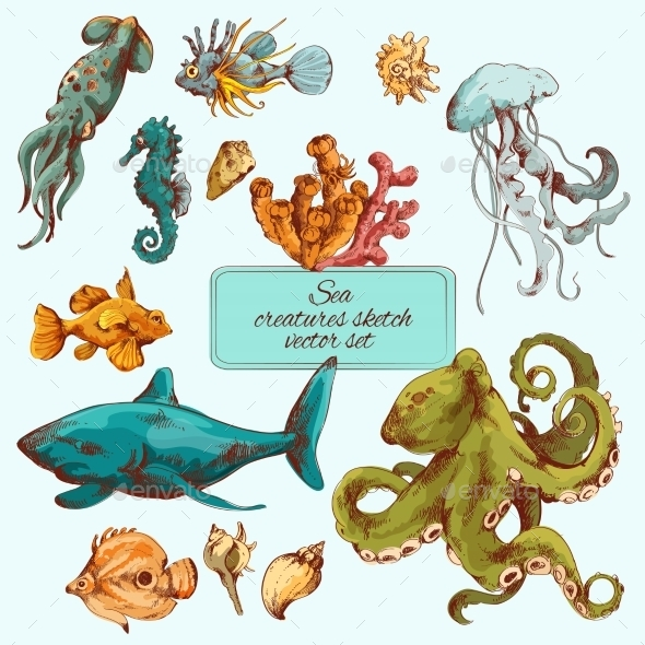 GraphicRiver Sea Creatures Sketch Colored 8975045