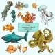 Sea Creatures Sketch Colored - GraphicRiver Item for Sale