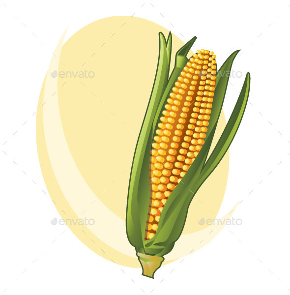 GraphicRiver Corn 8975936