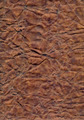 grunge texture - crumpled paper - PhotoDune Item for Sale