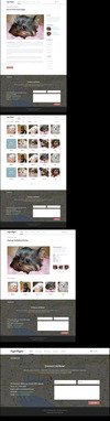03-pages-pet-shop-flat-psd-theme.__thumbnail