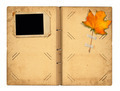 Open vintage photoalbum for photos with autumn foliage on white - PhotoDune Item for Sale