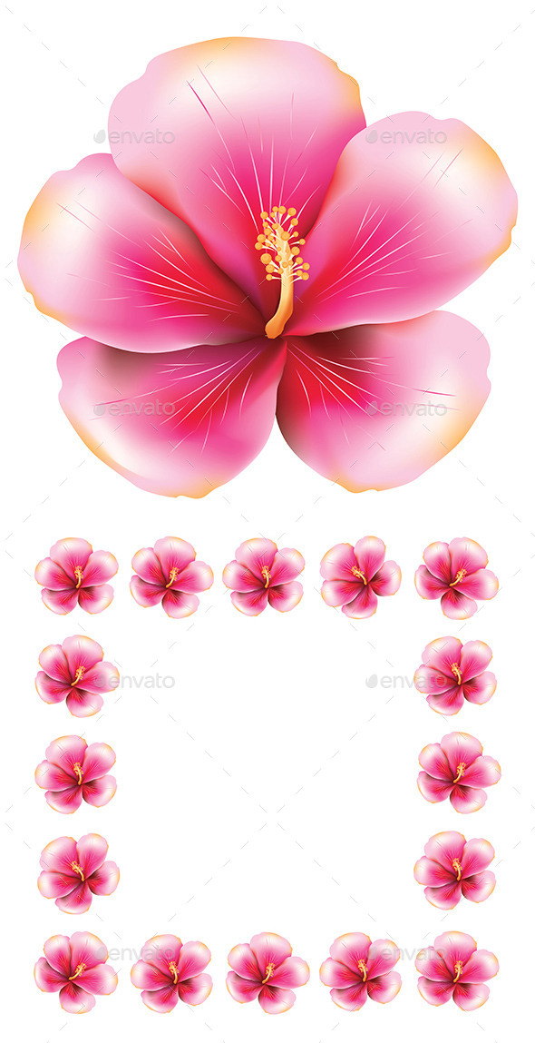 GraphicRiver Pink Hibiscus 8987332