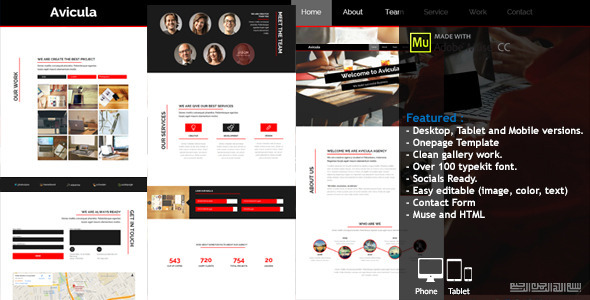 ThemeForest Avicula Business Creative Muse Template 8956206