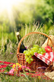Picnic basket with hat - PhotoDune Item for Sale