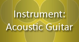Instrument Acoustic Guitar