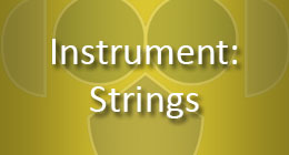 Instrument Strings