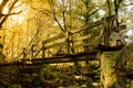 Wood Bridge in Geres - PhotoDune Item for Sale