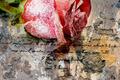 Love letter - PhotoDune Item for Sale