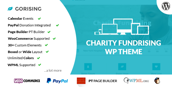 ThemeForest GoRising Charity Non-Profit Fundrising WP Theme 8994329