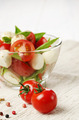 Tomatoes and Salad Caprese - PhotoDune Item for Sale