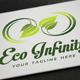 Eco Infinity Logo - GraphicRiver Item for Sale
