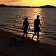 Sunset Walk in Slow Motion - VideoHive Item for Sale