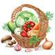 Basket  of Different Vegetables - GraphicRiver Item for Sale