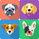 Flat Dog Icon Set - GraphicRiver Item for Sale