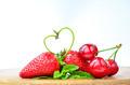 Spring fruit - PhotoDune Item for Sale