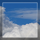 Birds And Clouds - VideoHive Item for Sale