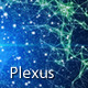 Within Plexus Core