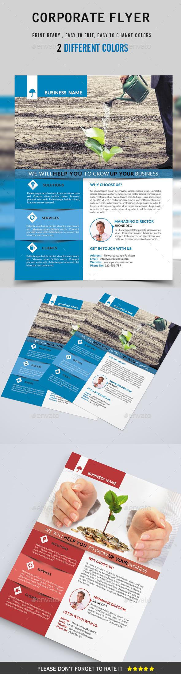 GraphicRiver Corporate Flyer 9007392