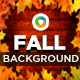 Wood and Fall/Autumn Backgrounds - GraphicRiver Item for Sale