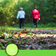 Forest Walking - VideoHive Item for Sale