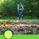 Forest Cycling - VideoHive Item for Sale