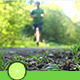 Forest Running - VideoHive Item for Sale